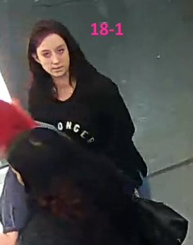 Person 18-1 Wanted for Theft