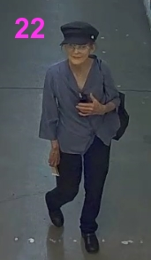 person22 wanted for theft